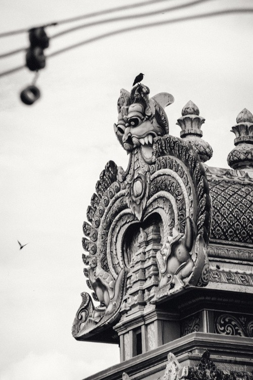 印度南部Trichy的神庙 Temples in Trichy by Richard Curtis